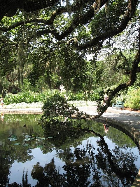 Brookgreen Gardens Myrtle Beach Sc