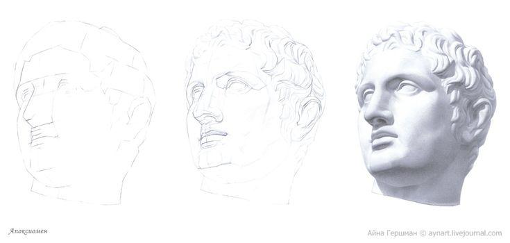 Подробный рисунок головы