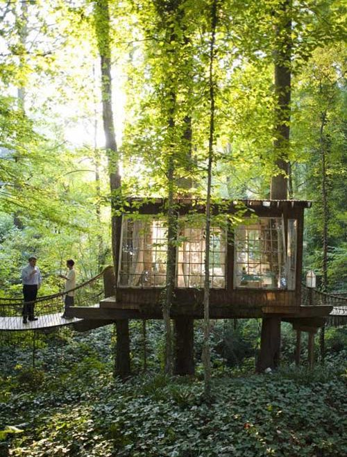 So cool. Just a simple tree fort.