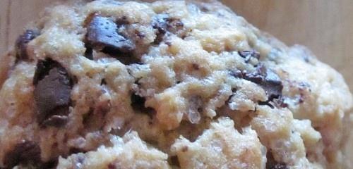Gluten-Free Vegan Chocolate Chip Cookies: (Recipe by David Straus)