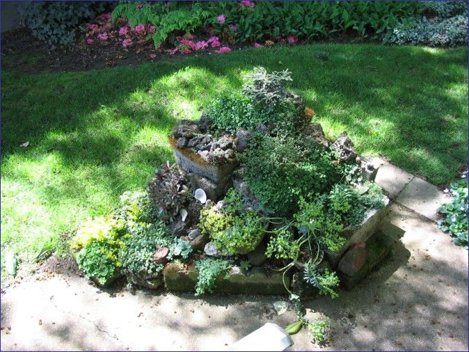 Small rock garden planted with sedum garden landscape Small rock garden