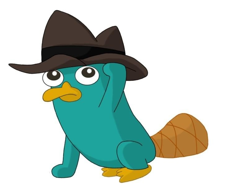 Curse you perry the platypus perry the platypus pinterest