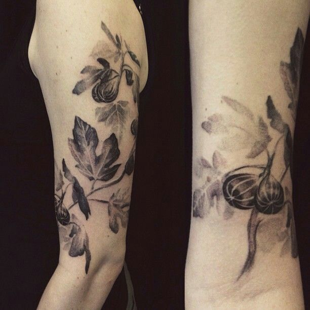 Fig tree branch tattoo tattoos pinterest for Fig tree tattoo