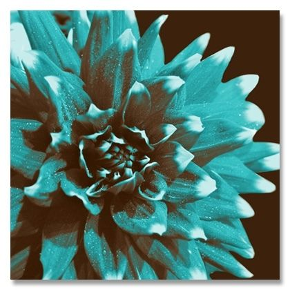 brown and turquoise flower home decor wall art pinterest. Black Bedroom Furniture Sets. Home Design Ideas