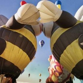 Kissing Bees :) | Full Of Hot Air | Pinterest
