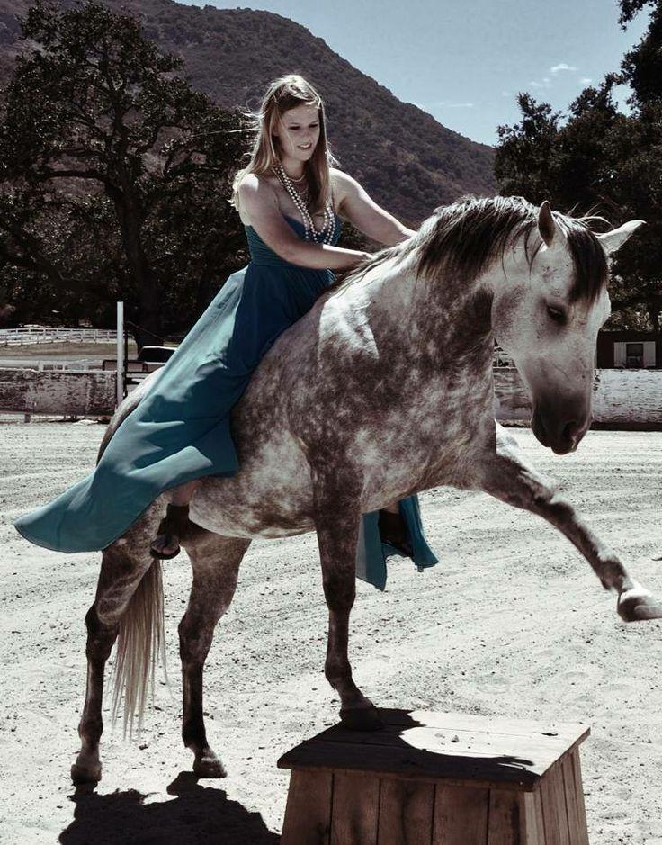 https://www.facebook.com/MosieTrewhittLibertyHorsemanship  #libertyhorsemanship #Liberty #horsemanship #training #horses