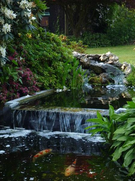 ... www.architecte-paysagiste.be/amenagement-exterieur/jardin-avant-apres