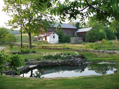 Landscaping farm pond ideas pinterest for Landscaping around ponds