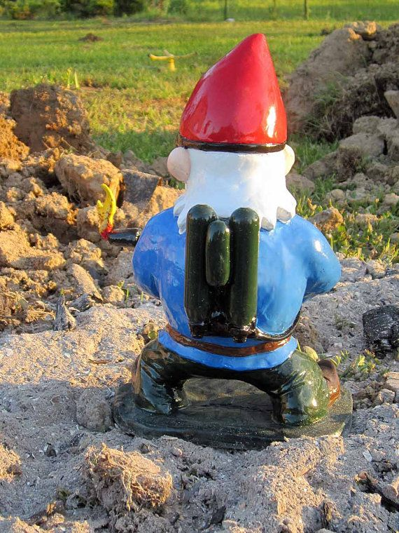 Combat Garden Gnomes Photograph Combat Garden Gnome With F