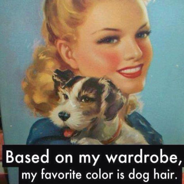 Ποιο είναι το αγαπημένο μου χρώμα ;