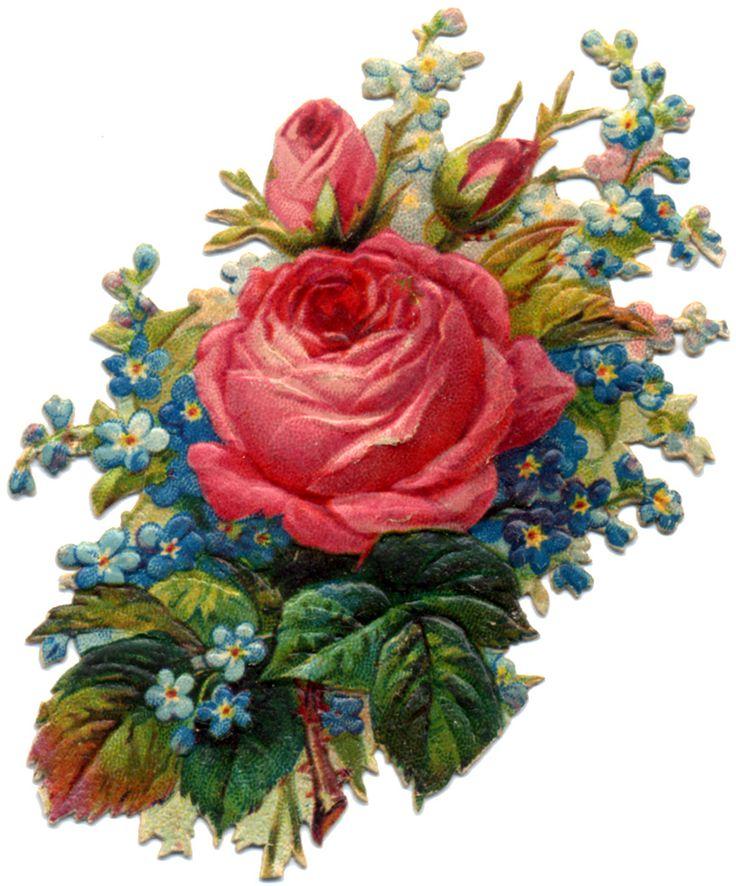 Victorian Flower Scrap