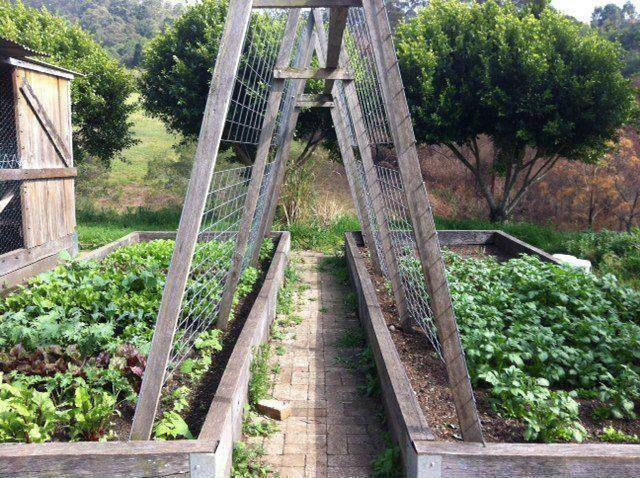 Raised beds and trellis path Garden Structures Pinterest