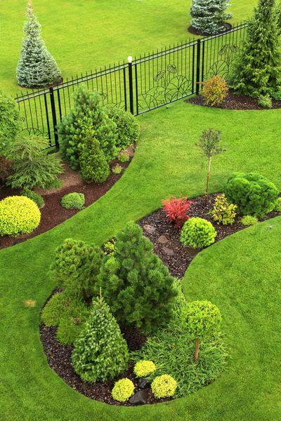Сад дизайн 6 соток