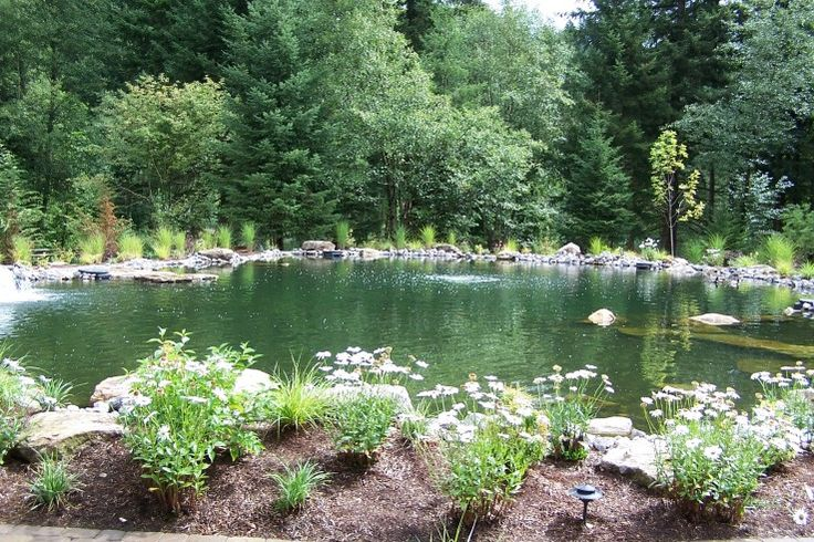 Backyard Ponds Maryland : Large Pond like the big rocks sticking out of the water