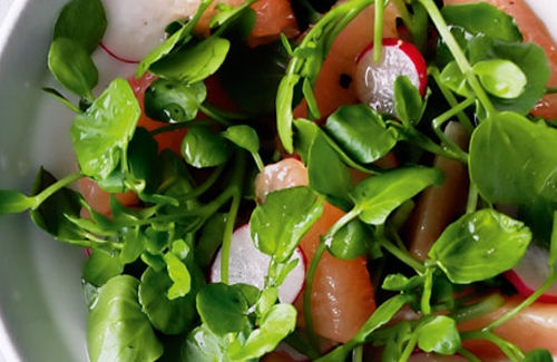 Peppery watercress, citrus and radish salad