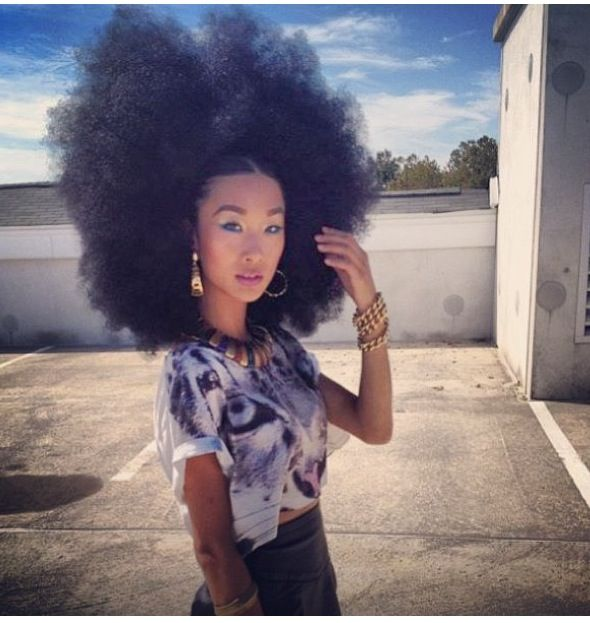 Afro Asian Hair 10