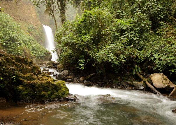 La Paz Waterfall Gardens Costa Rica Outdoors Wilderness Pinterest