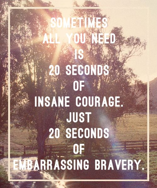 """sometimes all you need is 20 seconds of insane courage, just 20 seconds of embarrassing bravery."""