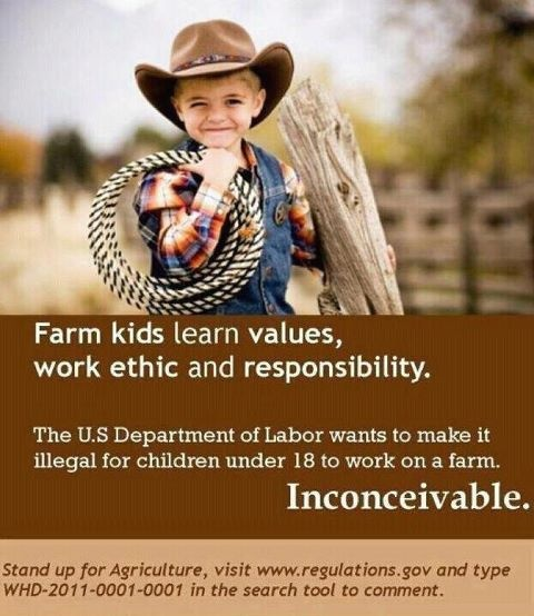 "The US department of labor wants to make it illegal for children under the age of 18 to work on a farm. Click ""REPIN"" if you think this is stupid!"