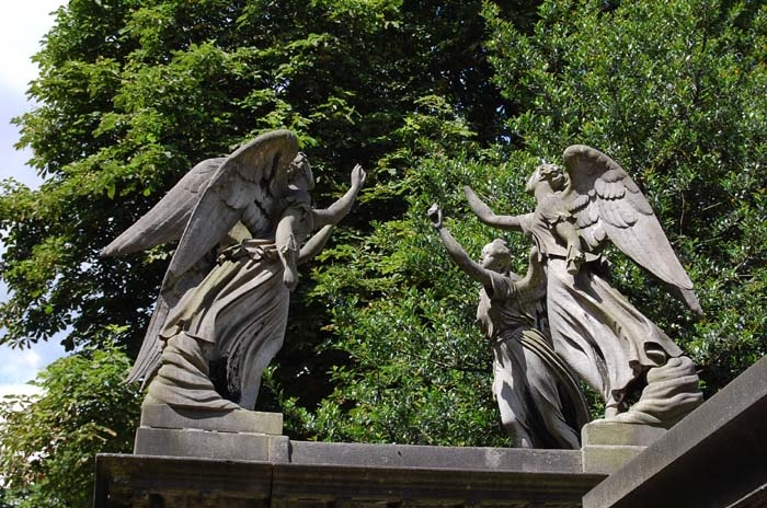 These sneaky Weeping Angels are in Kensal Green cemetery, London. There's a TARDIS-shaped gap in the midst of them, which can surely be no coincidence. Empirical proof that the Doctor is real.