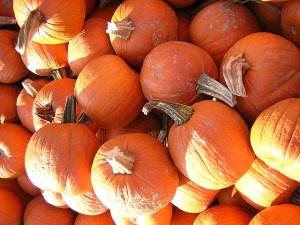 Recipe for healthy Pumpkin Soup