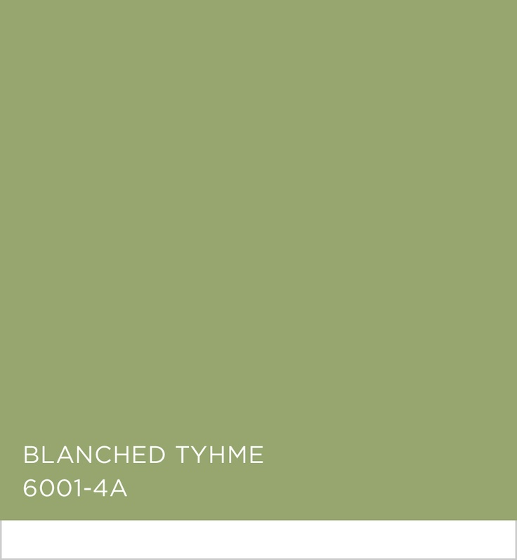 Valspar Blanched Thyme Colors In Focus Green Pinterest