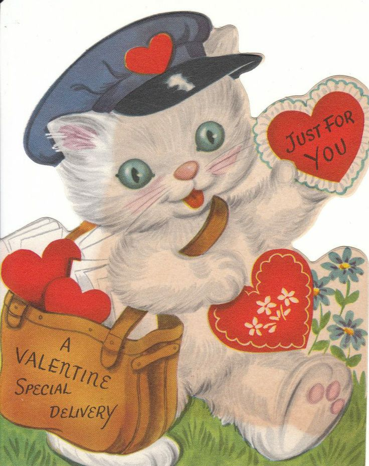 valentine kitten pictures