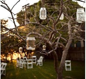 Love Lights...Love Trees...Love lights in trees...