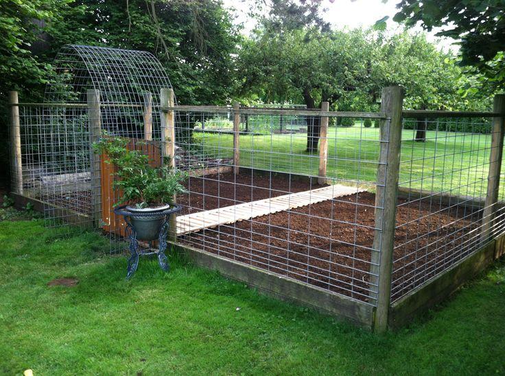 Goat pen turned pumpkin patch. | garden ideas | Pinterest