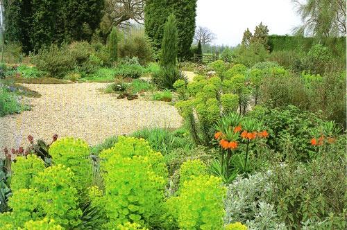 drought tolerant garden designs in the garden pinterest