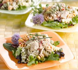 Dilled Salmon Pasta Salad | Pastas & Pizza | Pinterest