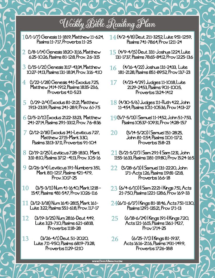 It's just a picture of Modest Bible Reading Plan Printable