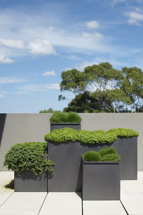 Outdoor Terraces in Glebe, Australia by Secret Gardens