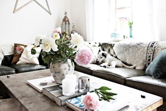 ECU on dream living room