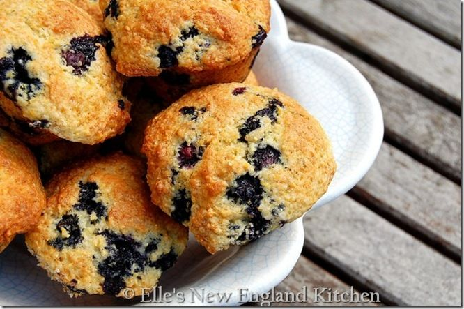 Blueberry Lemon Lime Corn Muffins from Elle's New England Kitchen
