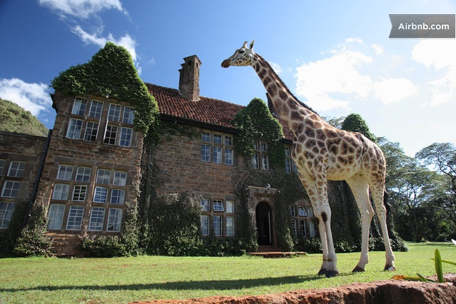 The Giraffe Manor is an elegant, personally hosted, small and exclusive hotel, famous for its resident herd of giraffe.Travelers from all over the world now make The Giraffe Manor part of their East African safari, the only place in the world where you can enjoy the breathtaking experience of feeding and photographing the giraffe over the breakfast table and at the front door. The Giraffe Manor is surrounded by 140 acres of indigenous forest just outside Kenya's capital, Nairobi.