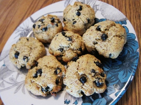 Blueberry Protein Cookies (made with almond flour!)