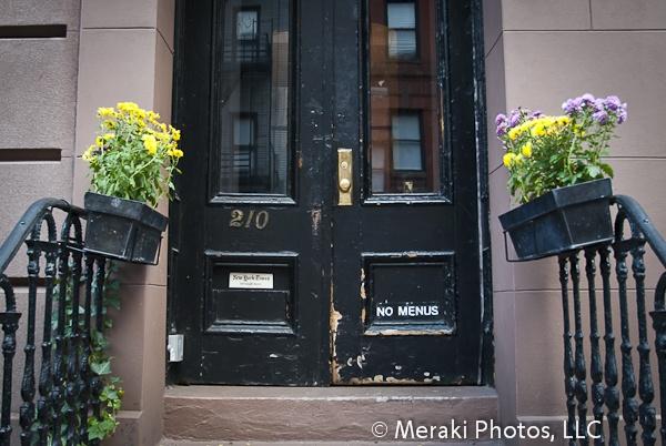 new york city essay
