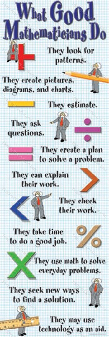 Poster: What Good Mathematicians Do