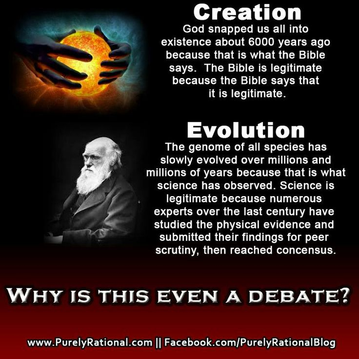Summary of Scientific Evidence for Creation (Part I & II)