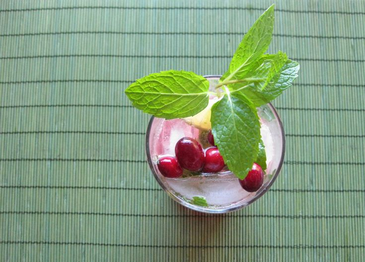 Christmas Cranberry Mojito from http://ksarahdesigns.typepad.com/my ...