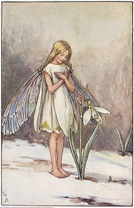 Illustration for the Snowdrop Fairy for Flower Fairies of the Winter. A girl fairy stands in the snow in front of a snowdrop, with her arms folded across her chest.                                         Author / Illustrator          Cicely Mary Barker