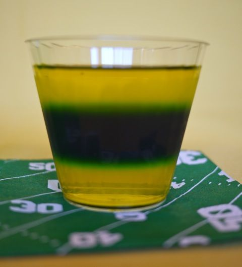Pittsburgh steelers jello shots i don t have a dog in this race but
