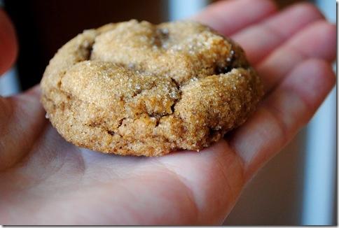 Pumpkin Gingersnap Cookie