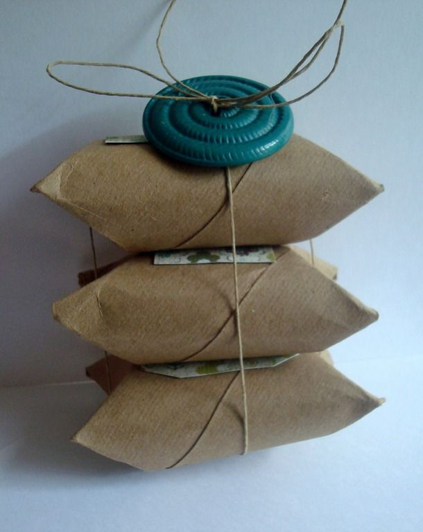 Recycled toilet paper rolls wrap it to perfection for Recycling toilet paper tubes