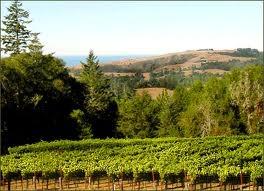 Edna Valley ~ California