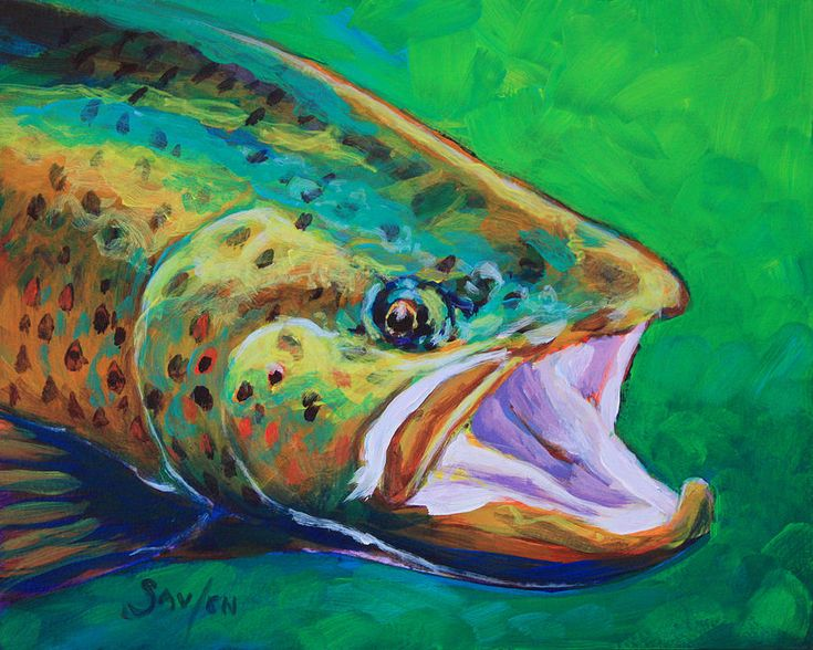 Spring time brown trout fly fishing art print by mike savlen for Fly fishing art