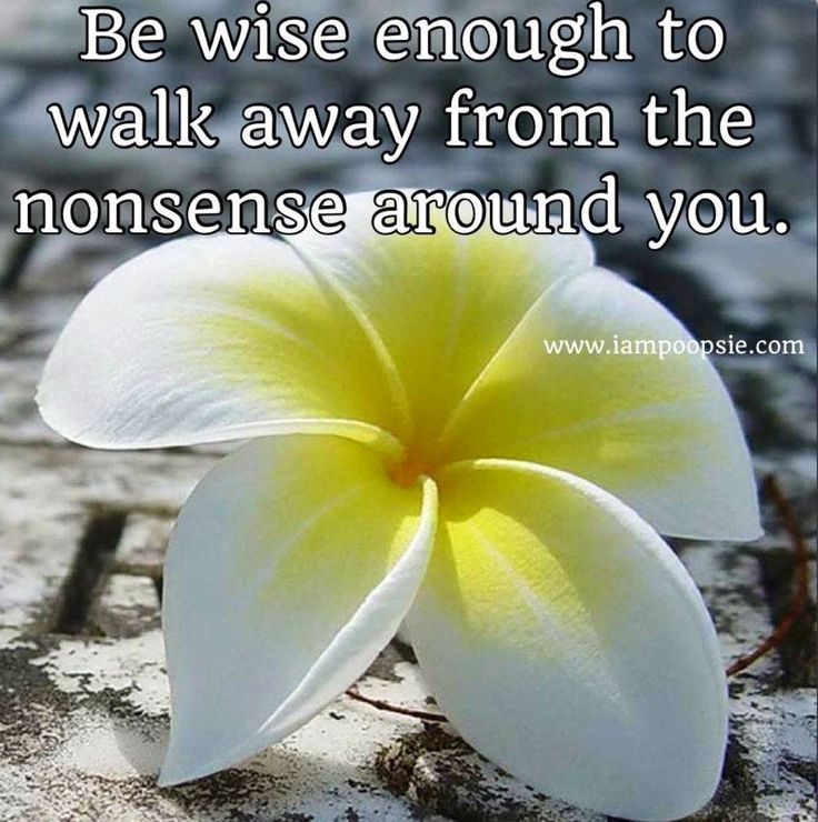Be wise enough to walk away quote via www.IamPoopsie.com