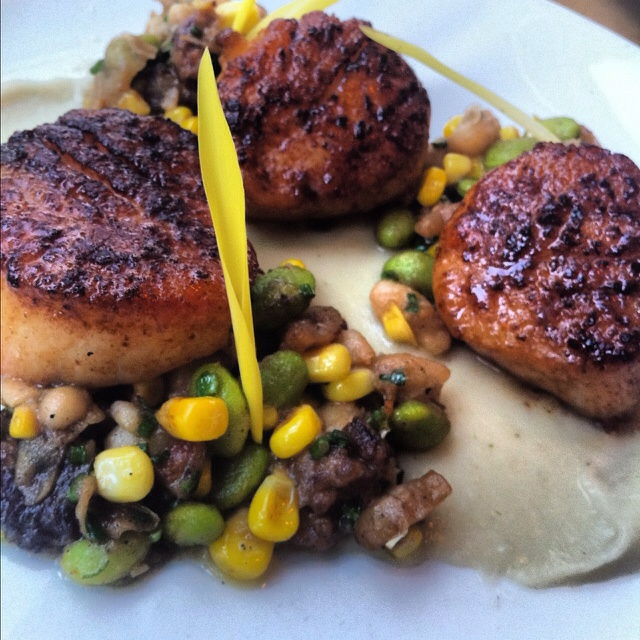 seared scallops with carambola sauce parsnip and succotash food seared ...