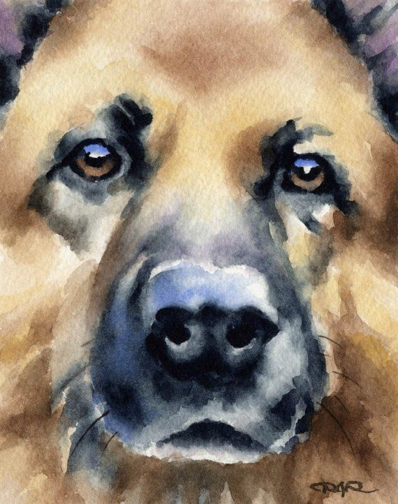 German shepherd dog art print signed by artist dj rogers